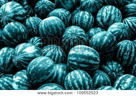 Screensaver From Heap Of Blue Watermelons
