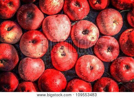 Vivid Freshly Picked Red Apples Close Up Background With Contrasting Shadows And Vignetting Effect