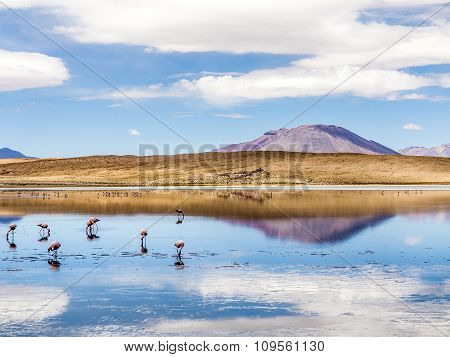 Laguna Kara Salt Lake With Reflection Of The Mountain, Eduardo Avaroa Andean Fauna National Reserve