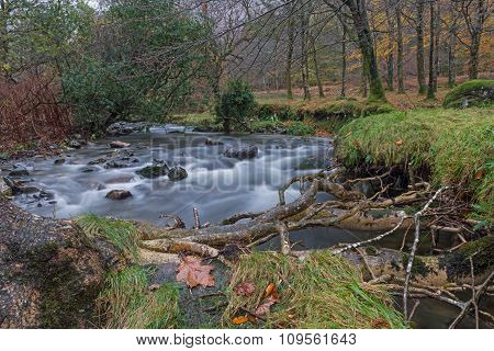 Snowdonia River in Autumn