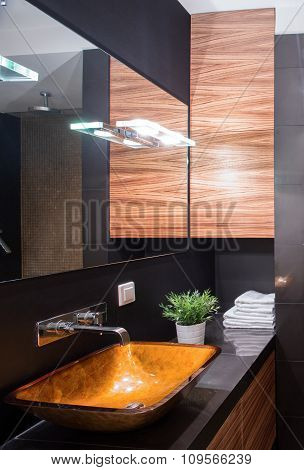 Shiny Bathroom In Dark Colours