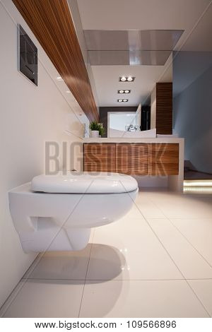Shiny Toilet In Contemporary House