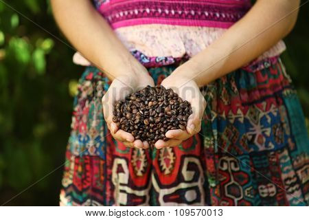 Woman holds in hands roasted coffee beans, close up