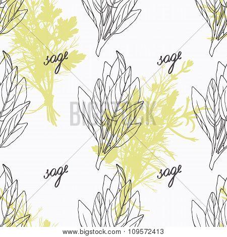 Hand drawn sage branch and handwritten sign. Spicy herbs seamless pattern. Doodle kitchen background