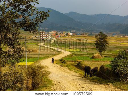 Dirt road leading to Sankhu village in Nepal