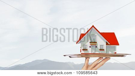 Hand of waiter offering house model on tray