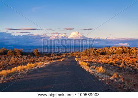 Trail in prairie