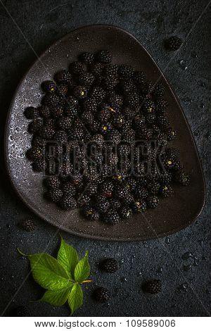 Fresh Blackberry On Black Plate.