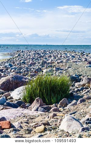 Stony Shore Of Baltic Sea, Paljassaare Peninsula, Estonia