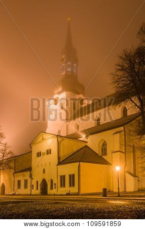 The Cathedral Of Saint Mary In Tallinn (dome Church), Estonia