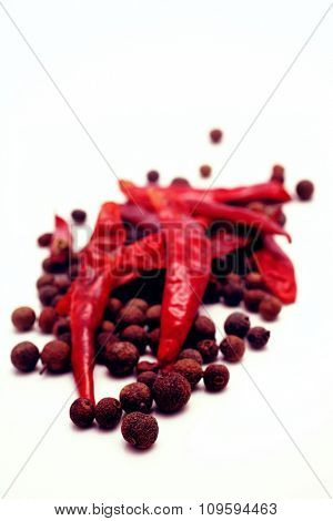 hot spices with pepper on white background