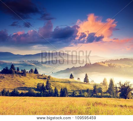 Fantastic sunny hills under morning overcast sky. Dramatic scenery. Carpathian, Ukraine, Europe. Beauty world. Retro filtered. Instagram toning effect.