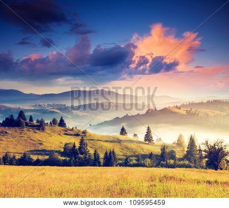 Fantastic sunny hills under morning overcast sky. Dramatic scenery. Carpathian, Ukraine, Europe. Beauty world. Retro filtered. Instagram toning effect.