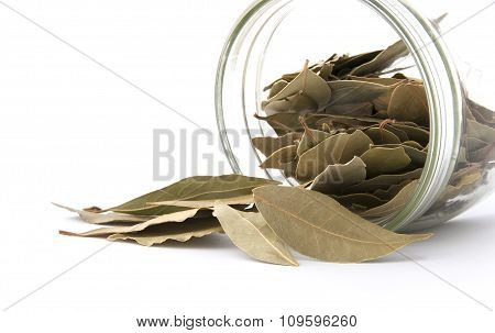 Bay Leaf Poured Out Of The Jar.