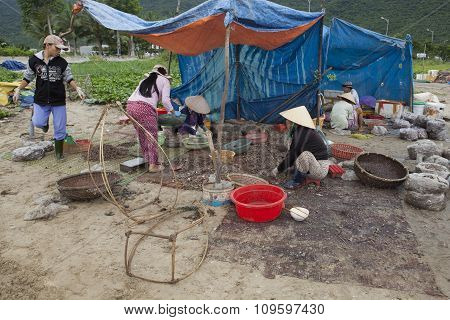 Fishers preparing seafood for sale after a catching trip from the sea on the beach side