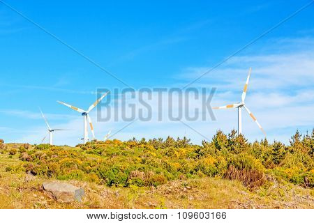 Wind Turbines In Natural Green Landscape - Blue Sky