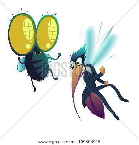 Insect, Fly And Mosquito
