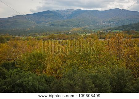 Colorful Autumn Fields, Livadia, Greece