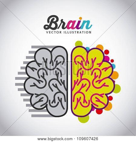 brain icon design