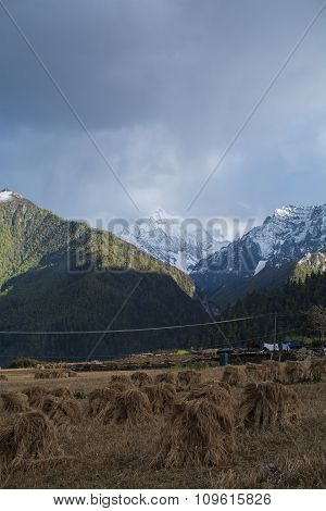 Farm At Yading Village, Sichuan, China Under Rain Clouds At Twilight With Mountain Background