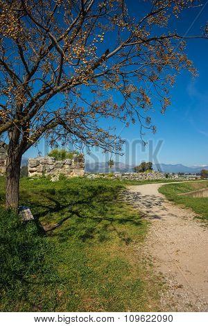 Landscape Near The Ancient Tiryns, Argolida, Greece