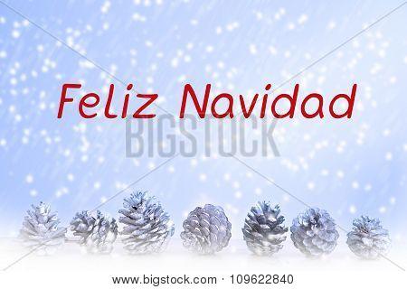 Spanish 'feliz Navidad' (merry Christmas)