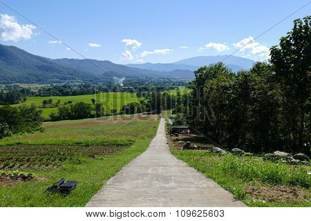 Vegetable Plot With Mountain And Paddy View