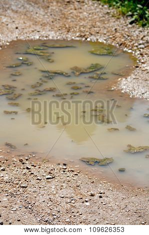 Mountain Reflected In A Puddle Of Mud