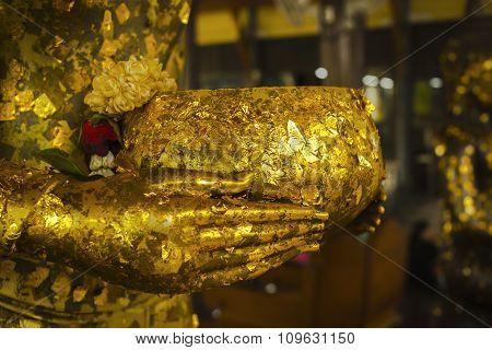 Golden bowl in hands.