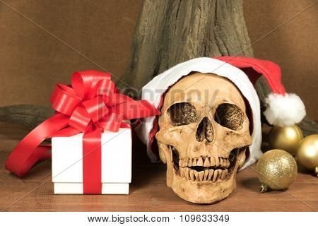 Still Life With Skull And Present