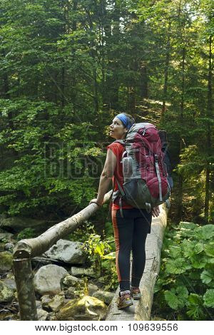 Hiker On The Footbridge