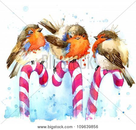 bird robin illustration. bird robin and Christmas candy watercolor background. bird robin  T-shirt g