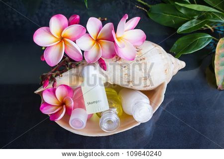 Mini Set Of Bubble Bath And Shower Gel In Sea Conch Shell
