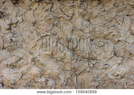 Gray Dry Mud