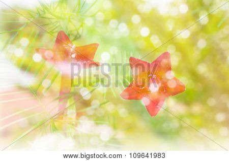 Flower And Bokeh Light With Romantic Feeling Of Winter And Snow Fall