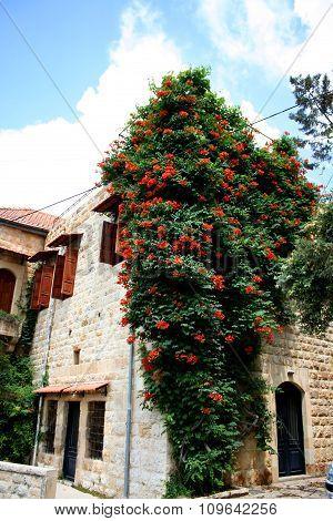Old house in Dibbiye, Mount Lebanon