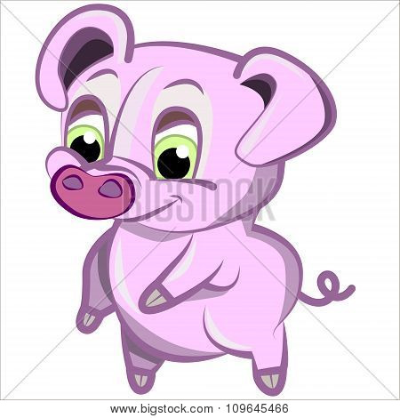 Vector isolated illustration cute cartoon of funny pink pig