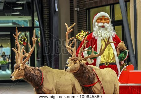 Santa Claus are near his reindeers