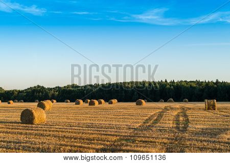 Straw Bale On The Field After Harvest.