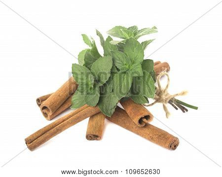 Bunch of mint and cinnamon sticks isolated