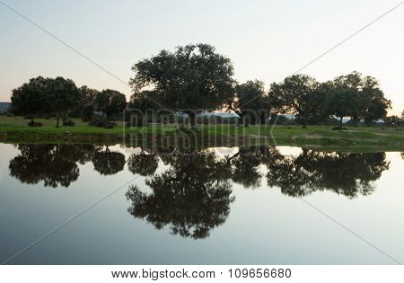 Beautiful autumn landscape. Trees reflected in the river water