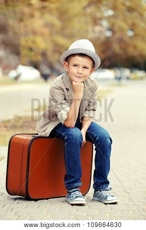 Little boy with suitcase in the park