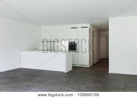 interior of new apartment, modern domestic kitchen