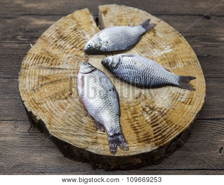 Fresh raw fish carp caught lying on a wooden stump. Live fish crucian Carassius auratus gibelio