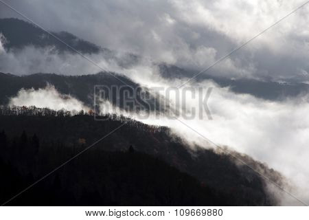 Dense Mountain Mist