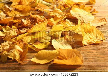 Yellow autumn leaves on wooden table