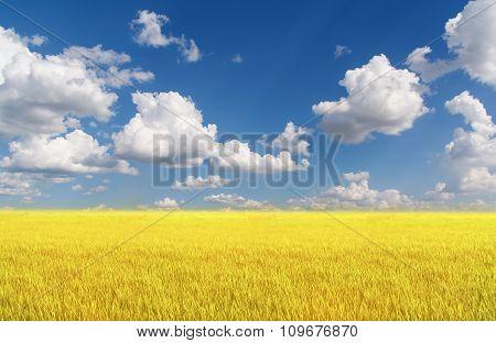 Beautifully Landscape