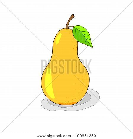 Bright yellow pear, hand-drawn