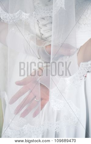 Bridal Dress And Hands In White Gloves. View From The Back.