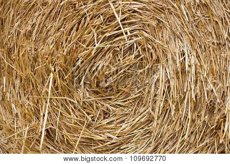 The pattern texture hay. A stack of hay.